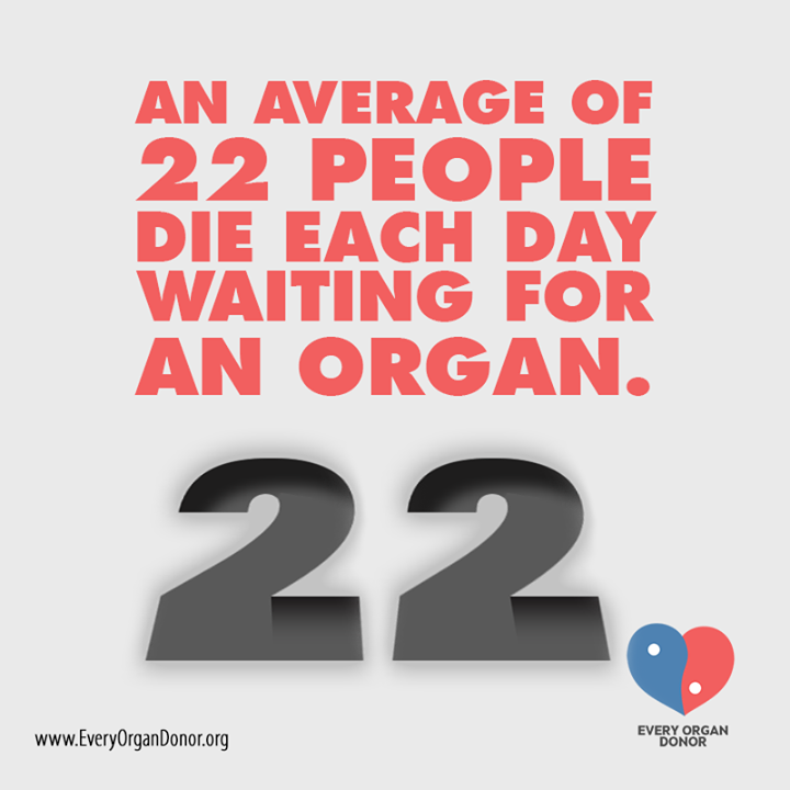 organ donation fact 2