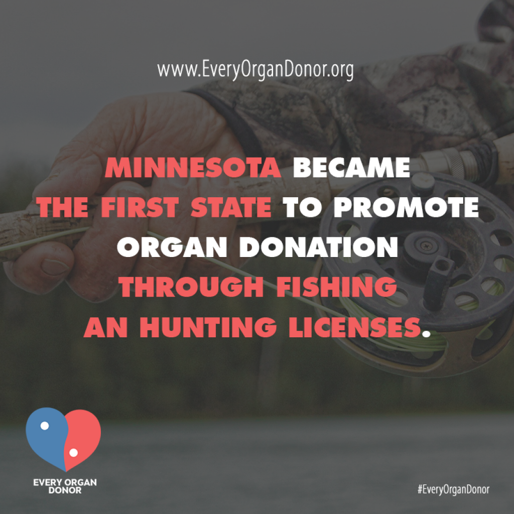 Minnesota organ donation is now promoted through fishing for Fishing license minnesota